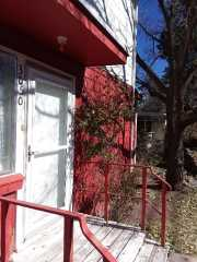 3BR, 2Bath, duplex at 3050 Walnut Street